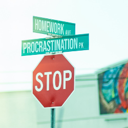 "Stop sign with street signs ""Homework Ave"" and ""Procrastination PK"""